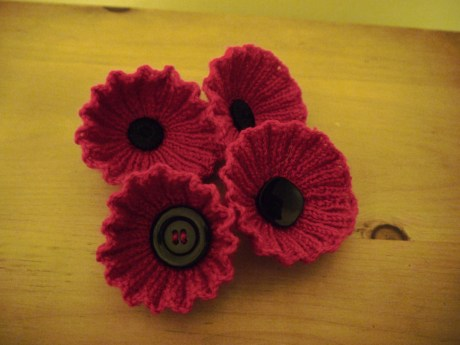 Knitted poppies for the Poppy Appeal.